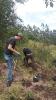 Plantando con DHL
